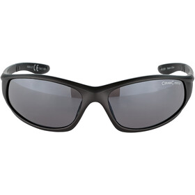 Alpina Wylder Gafas, tin matt/black mirror